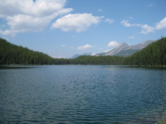 Lake Victoria - Picture of Jasper National Park, Canadian Rockies ...