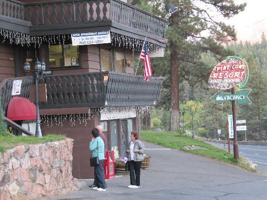 Pine Cone Resort: the resort office