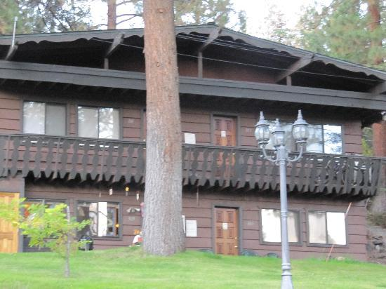 Pine Cone Resort: one of the cabins