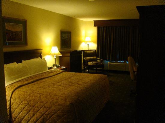 Best Western Plus Grand-Sault Hotel & Suites: Guest Room View 1