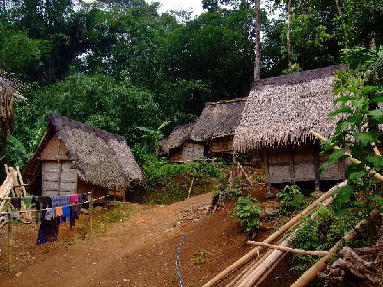 Hotel Mambruk Anyer : Badu Village