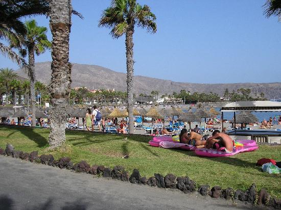 "Spring Hotel Vulcano: beach(spiaggia)  ""playa del camison"""