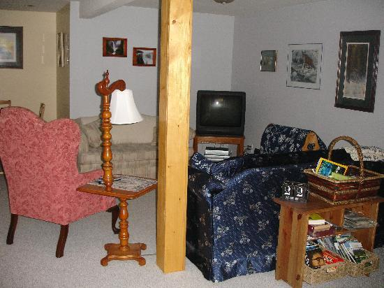 Garden View Cottage Bed & Breakfast: Lounge area with great range of videos and boosk