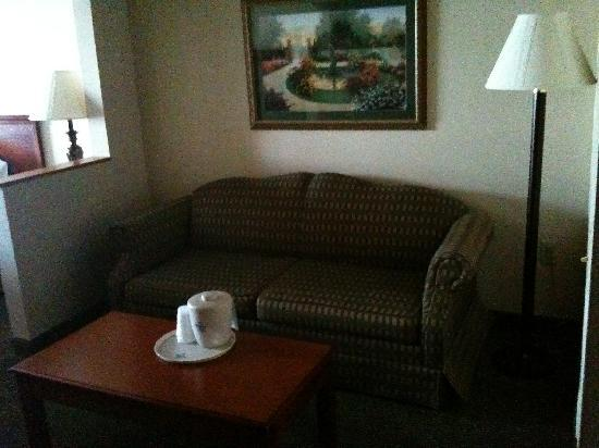 Holiday Inn Express Clinton: Couch