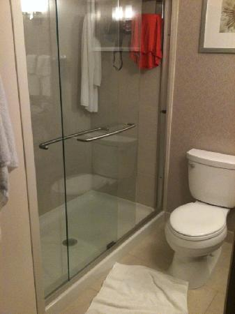 Hilton Garden Inn Toronto Airport West/Mississauga: The big and hot shower
