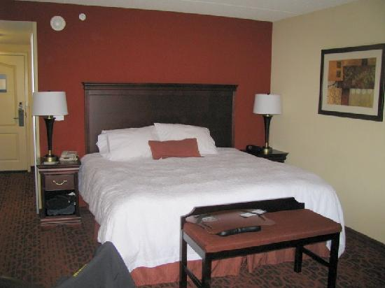 Hampton Inn Rochester Webster: King size bed - very Comfortable