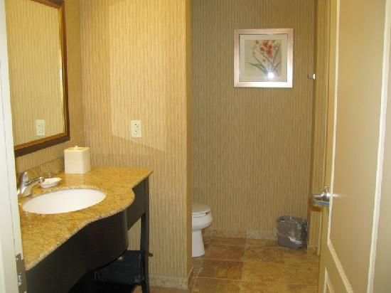 Hampton Inn Rochester Webster: Nice clean bathroom