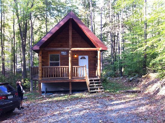Mountain Creek Cabins : Bobcat Cabin