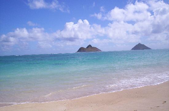 Kailua, HI: Vista 1