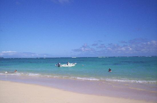 Kailua, هاواي: Vista 2