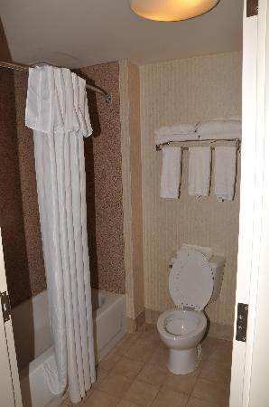 Homewood Suites Harrisburg East-Hershey Area: Bathroom in my 1-bedroom suite