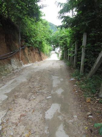 Sarikantang Resort & Spa: the access road, nothing to fear, remember it is Asia