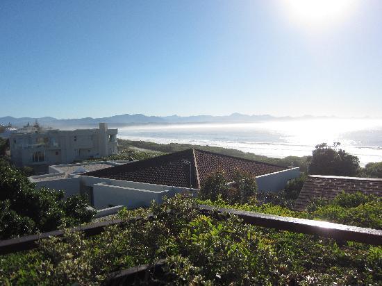Dolphins' Playground Beachfront B & B: Aussicht von der Terrasse aus