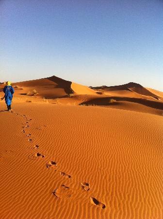 Dar Marhaba: Paseo en camello