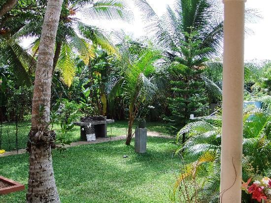 Shangri-Lanka Villa: Garden