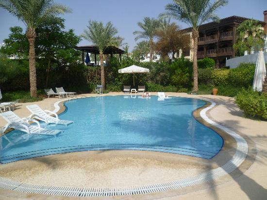 The Royal Savoy Sharm El Sheikh: chilling in the pool beds