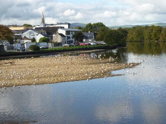 Arklow town river