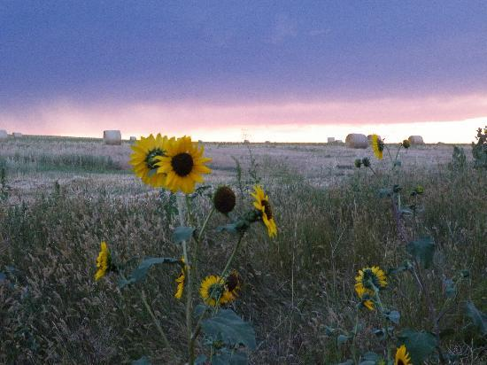 Batesland, SD: Peace, perfect peace at Wakpamni