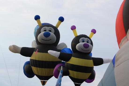 Albuquerque, Nuevo Mexico: These are a couple of Bumble Bees Balloons  . There were so many different shapes. Incredible.