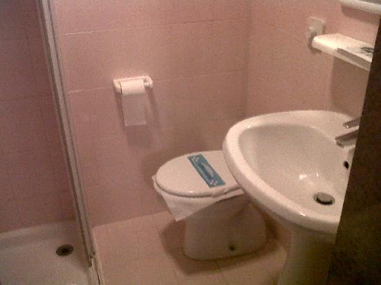 Hotel Garibaldi: Bathroom sink & toilet