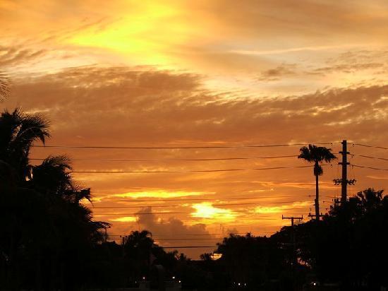 Best Western Intracoastal Inn : sunrise from the parking lot