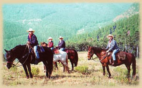 Circle K Guest Ranch: Enjoy high country horseback rides at Circle K Ranch