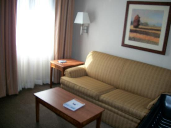Candlewood Suites Indianapolis Dwtn Medical Dist: Sofa