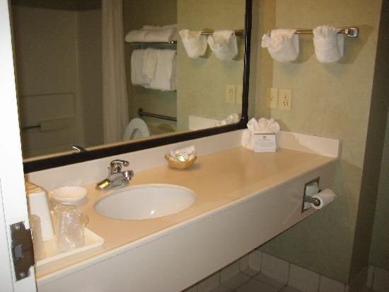 Best Western Plus Silver Creek Inn: sink