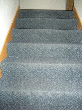 Super 8 Kokomo: stairs..look like they haven't been cleaned in weeks