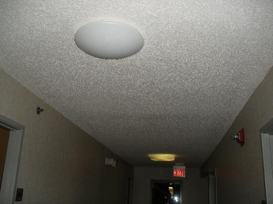 Super 8 Kokomo: hallway light right outside my room door burned out..makes it hard to find the room key late at