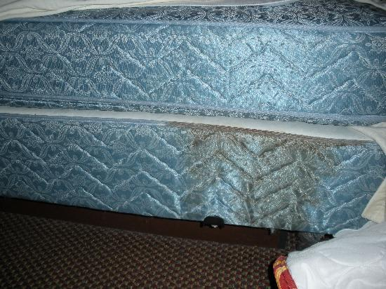Super 8 Kokomo: mattress and box springs stained with something..and no dust ruffle