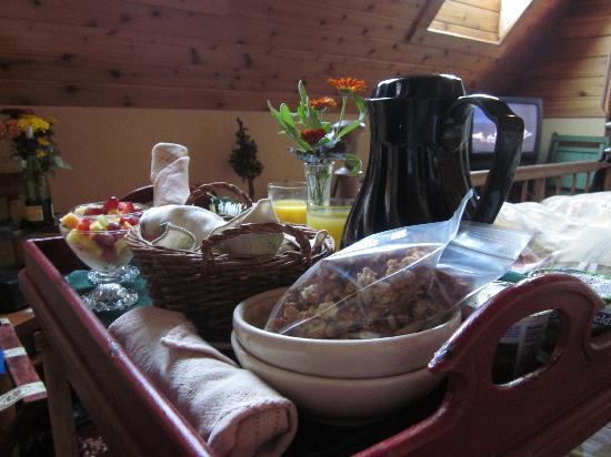The Black Walnut Guest House: great breakfast arrived at our door