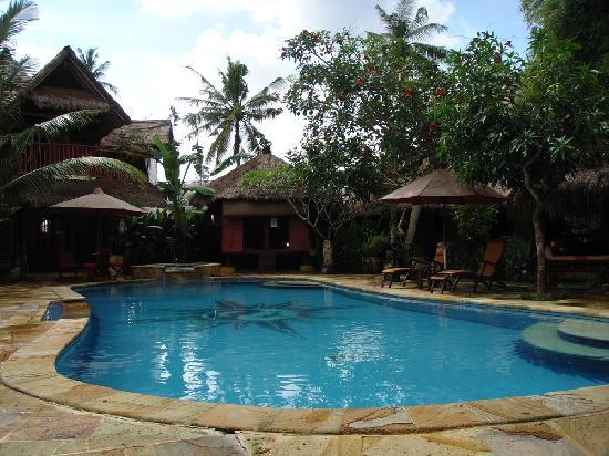 Serenity Eco Guesthouse and Yoga: Pool View