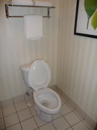 Fairfield Inn Boston Woburn/Burlington: bagno