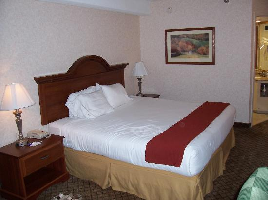 Holiday Inn Express Flint: The King Again