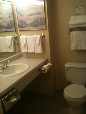 Visitors Inn: the bathroom