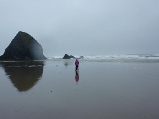 Ocean Point Inn & Spa: Beautiful quiet beach!