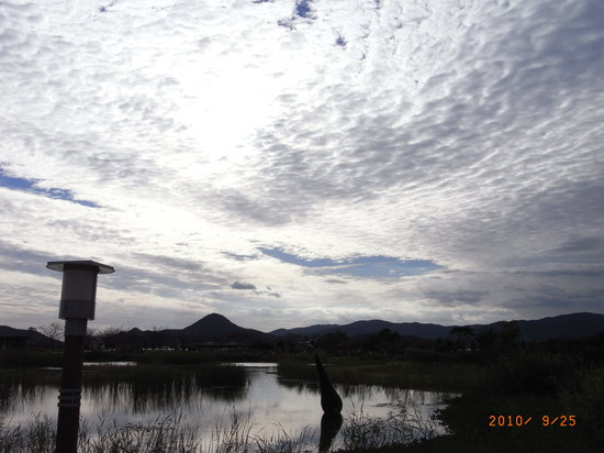 Suncheon Bay Cyber Ecological Park