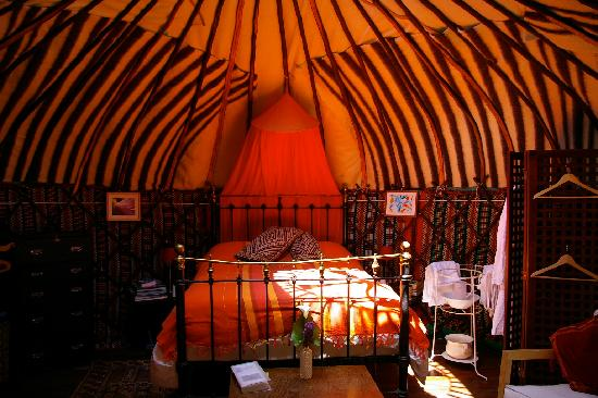 Yurt Holiday Portugal: Chestnut Tree Yurt