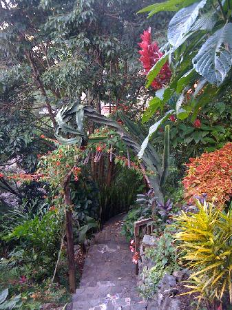 Villa Sumaya: Gardens and paths