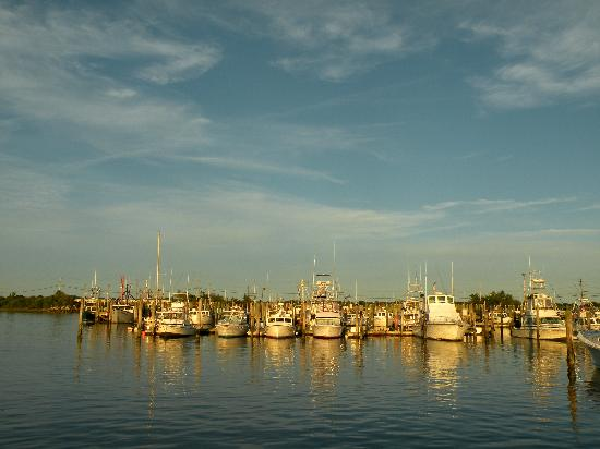 Galilee: Boats in the harbor (view from the water)
