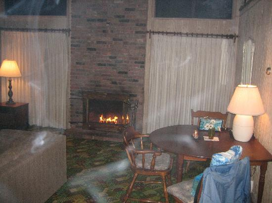 Silver Sands Motel & Beach Cottages: Fireplace/living room