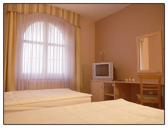Hotel Dakovo: classic room