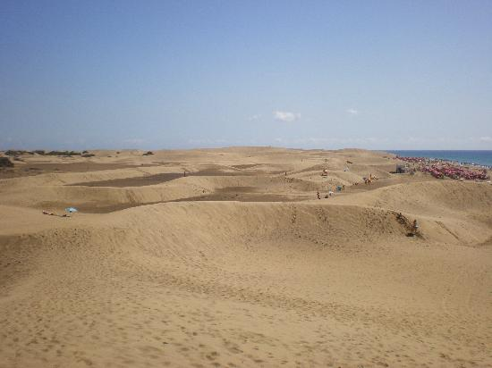 Hotel Dunas Suites and Villas Resort: playa