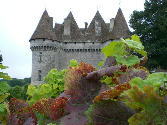 Montbazillac Vineyard near Bergerac