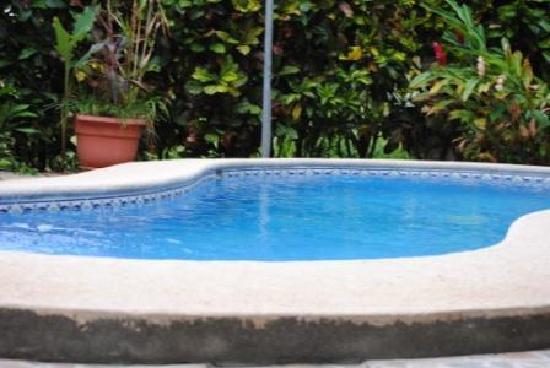 La Dolce Vita: The swimming pool