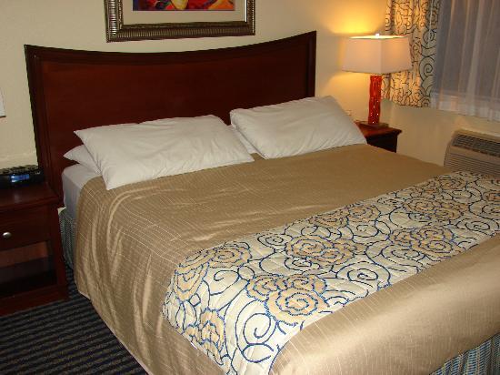 Super 8 Santa Cruz/Beach Boardwalk East: Comfy bed