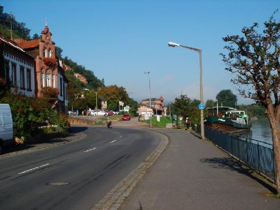 Jagd Hotel Rose: Lage am Main