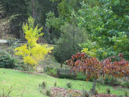 Love Grove Guest House: just a small area of gardens