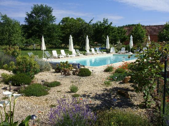 Le Jardin des Amis : 12x6m pool and pool bar